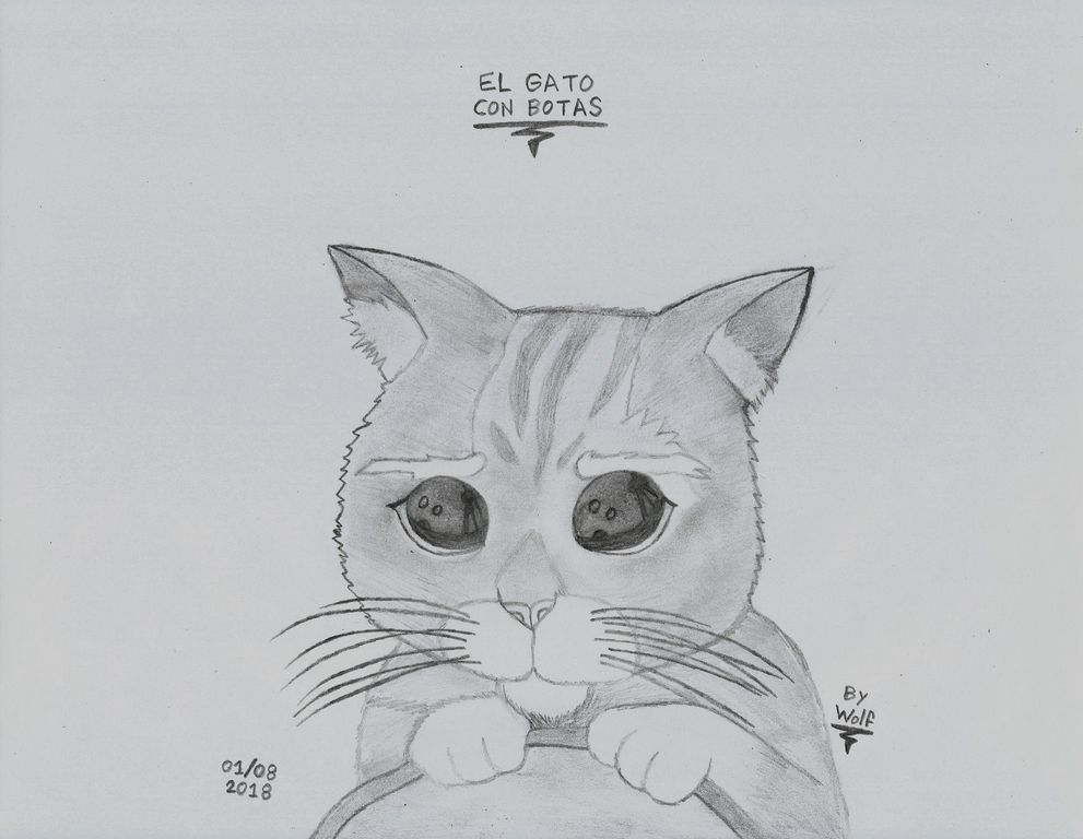 Dibujo A Lápiz De El Gato Con Botas Shrek Universo Del Dibujo Artelista Com