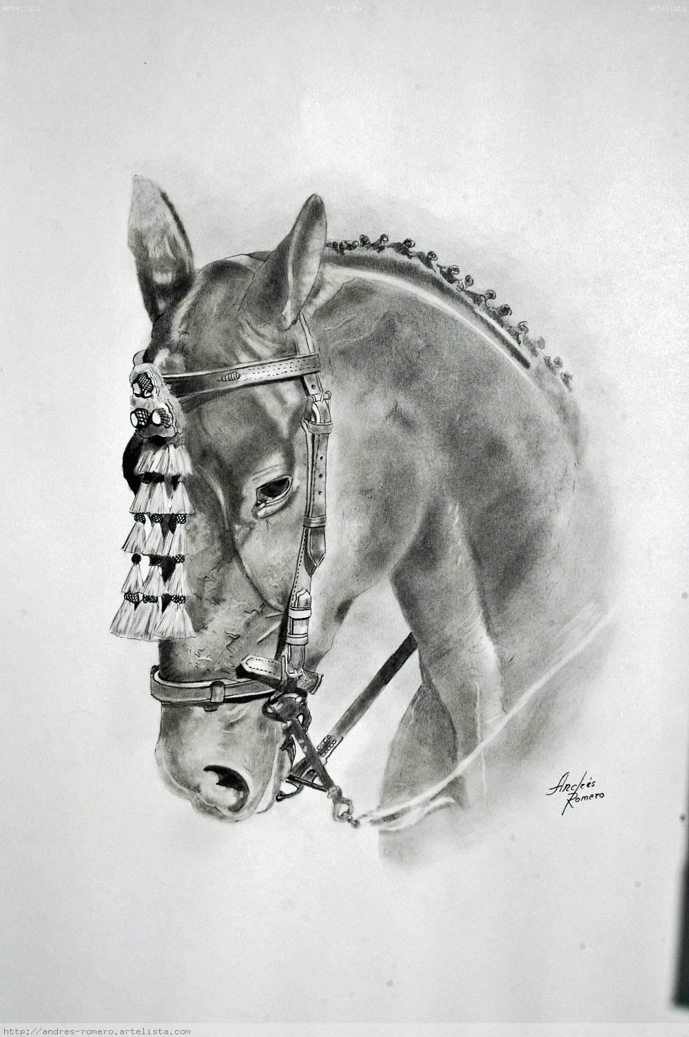 cabeza de caballos Pintor Andres Romero Torres  Artelistacom
