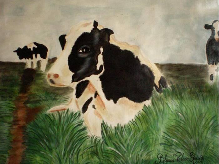 Holando argentinas blanca veloso garc a - Cuadros de vacas ...