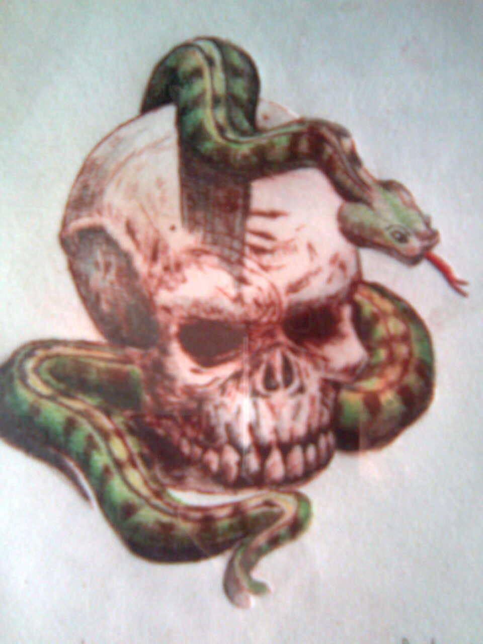 calavera con serpiente manuel morales sanchez  Artelistacom