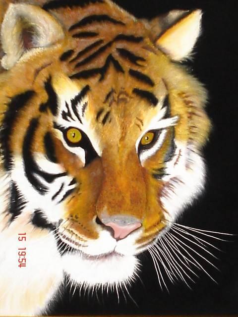 Tigre Solitario PintArte Cuadros - Artelista.com