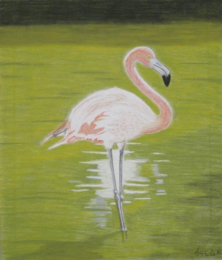 Flamenco en el estanque scar brey for Pintura para estanques