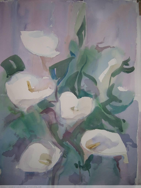 Flores+calas
