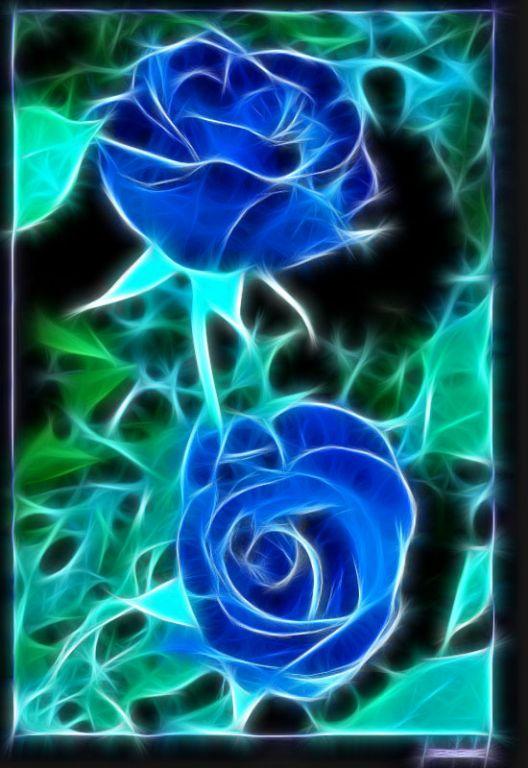 Rosas Azules Maria Bacho Artelistacom