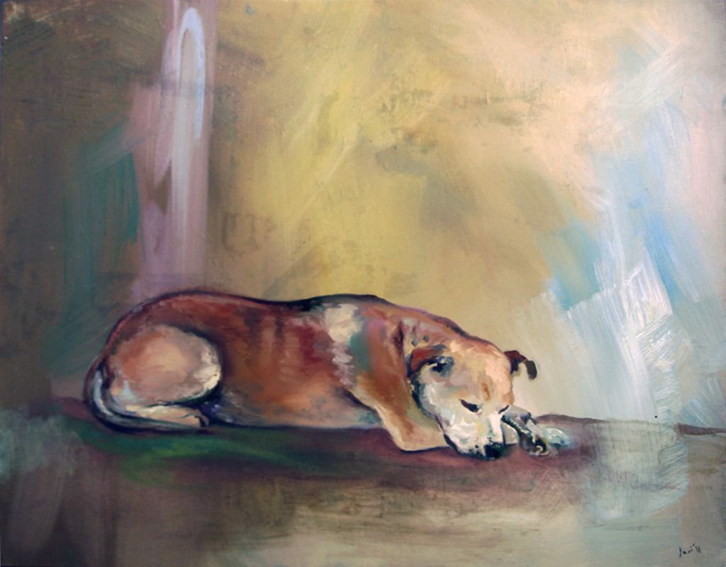 Perro tumbado Javier Fernndez Paiz  Artelistacom