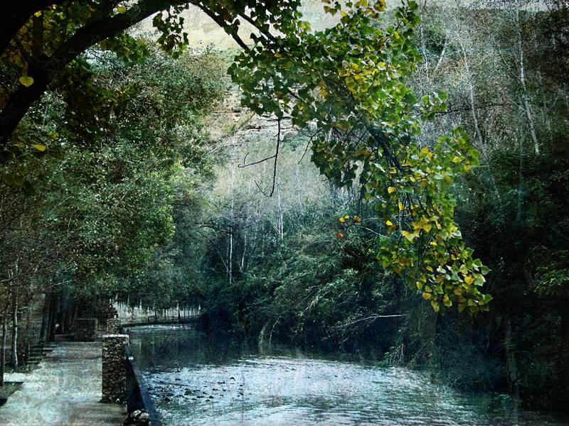 Paisajes oto ales juan a pellicer en - Imagenes paisajes otonales ...