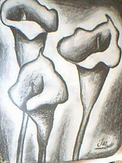 Obras de arte > Dibujo Carboncillo > JAZMIN JAIME ALVAREZ > alcatraces