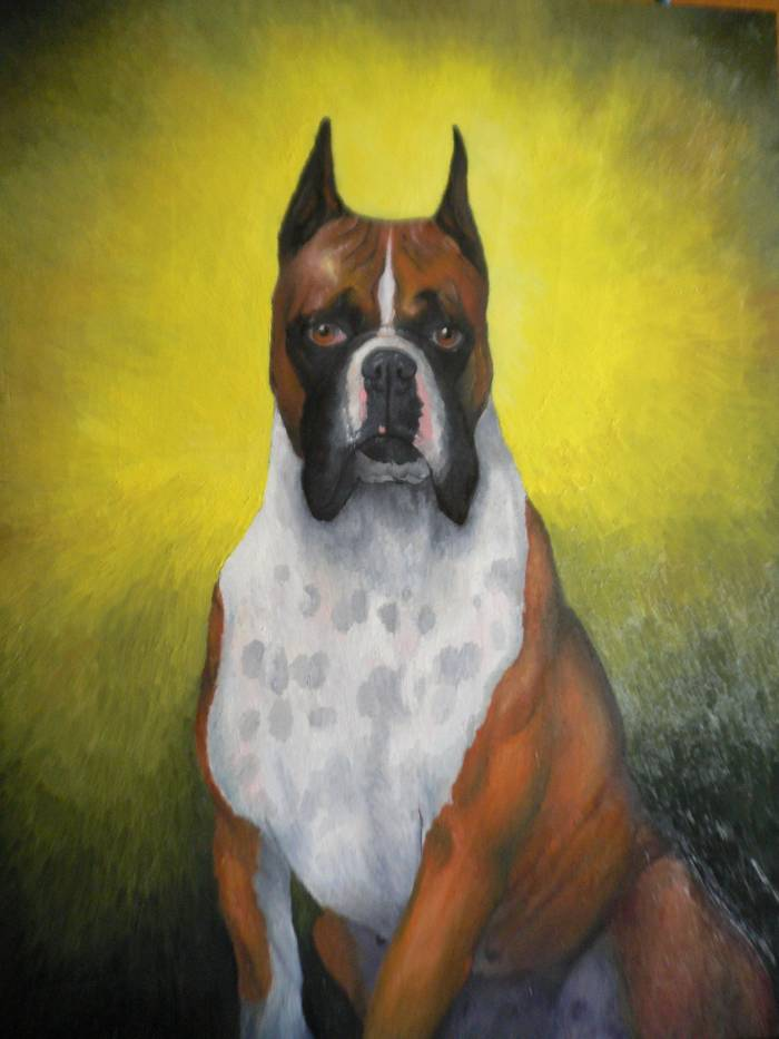 Perro Boxer Goríron Filo Artelistacom