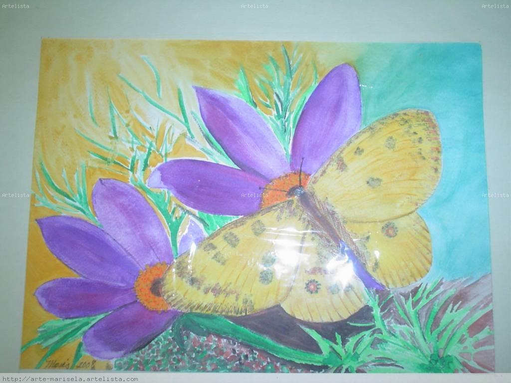 mariposa 1 marisela del villar seud nimo mares. Black Bedroom Furniture Sets. Home Design Ideas