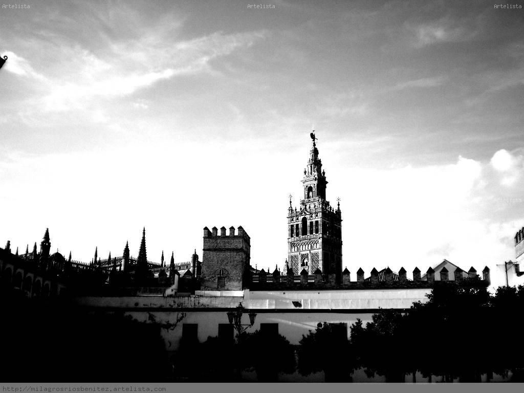 Sevilla milagros rios benitez - Arquitectura tecnica sevilla ...
