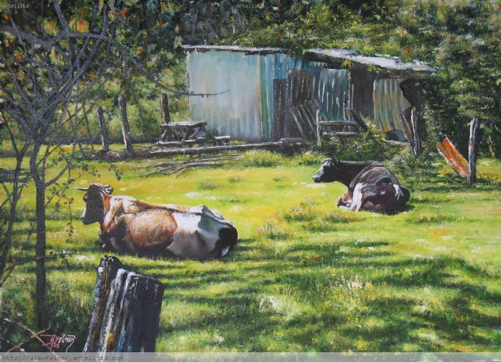 Vacas descansando alex felmer trivi os - Cuadros de vacas ...