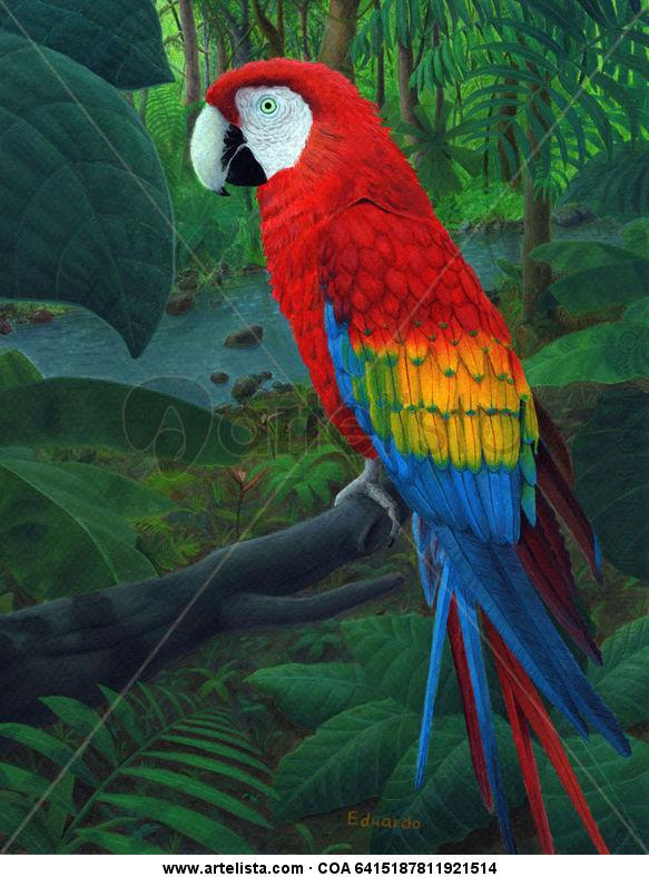Guacamaya sobre la selva Eduardo Hernández - Artelista.com