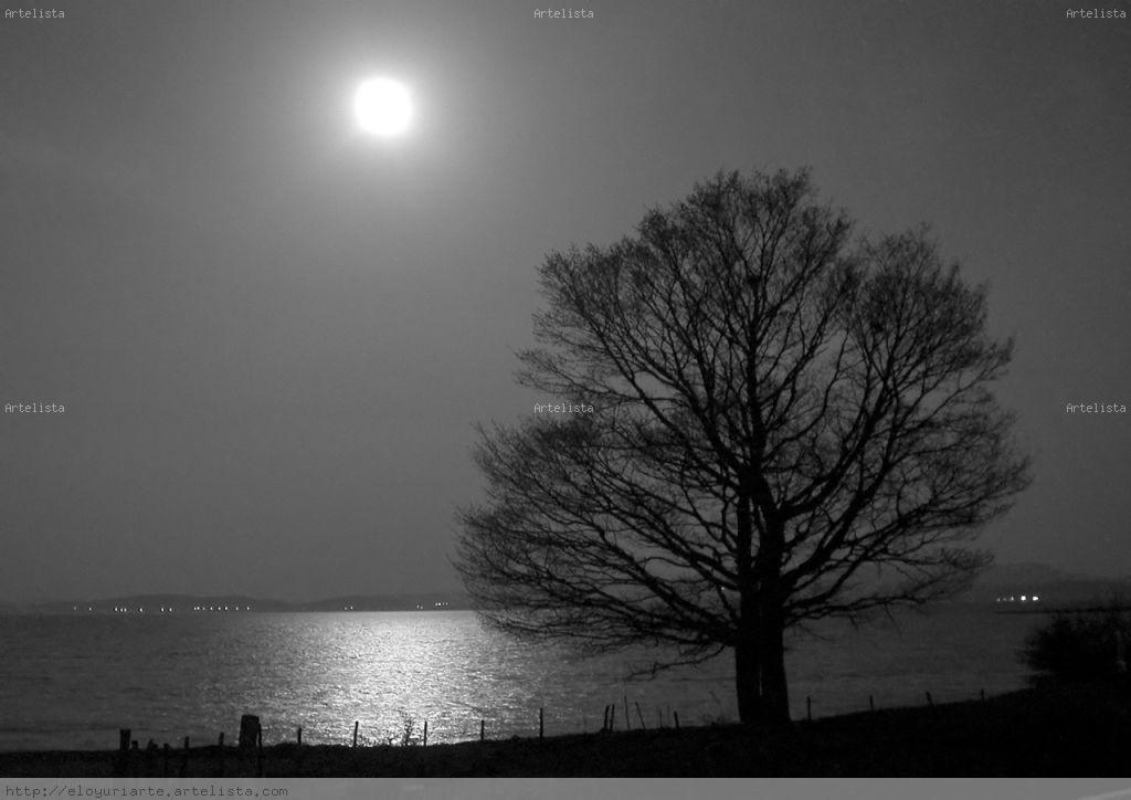23 historias de noches nevadas yukiyo ichiya monogatari sub espantildeol - 5 5