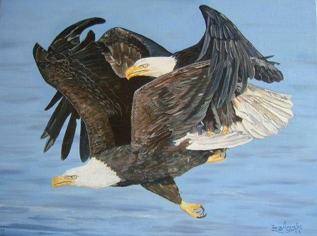 Aguilas jorge armando morales gramajo - Artelista.
