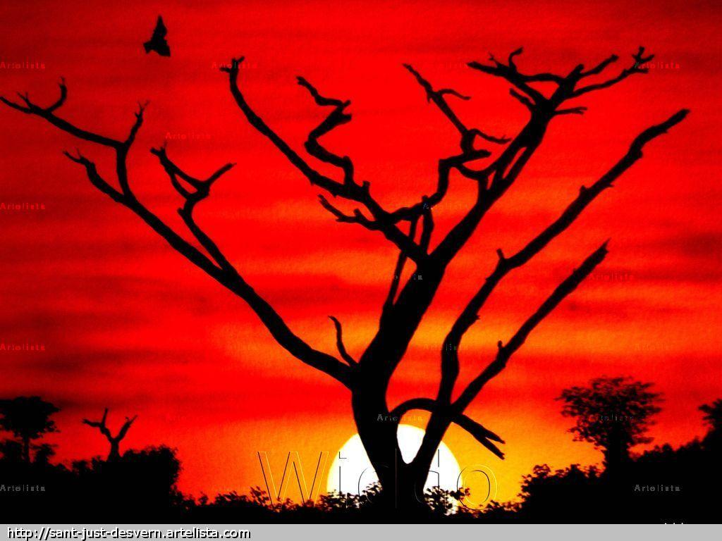 ATARDECER (REPRODUCCION LIENZO/BASTIDOR) Mannu Widdo - Artelista.com