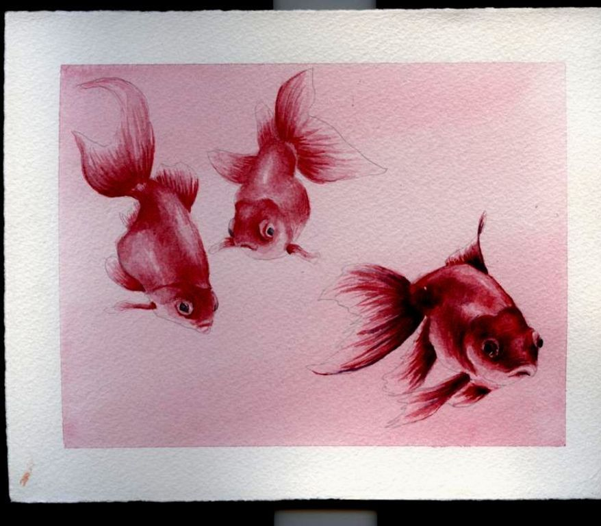 Peces rojos cristina p a fern ndez - Cuadros con peces ...