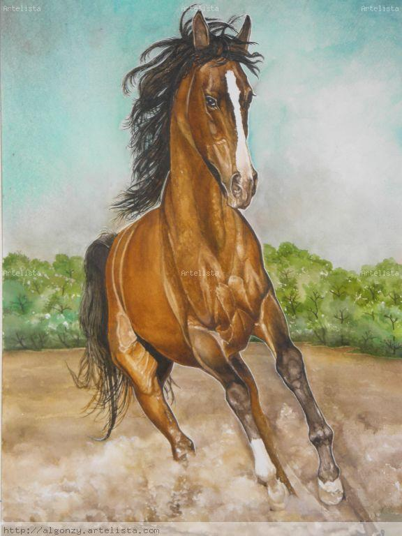 caballo alazan al galope carlos alberto gonz u00e1lez da silva
