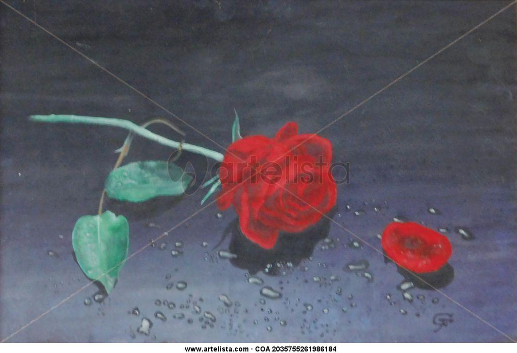 902ab53731 LA ROSA Gilber Farias - Artelista.com