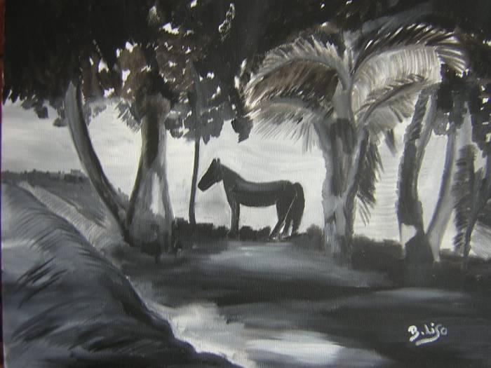 Caballo en blanco y negro bego a liso escrich - Blanco y negro paint ...