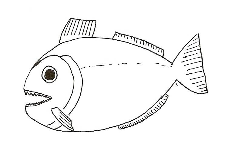 slippery fish coloring pages - free coloring pages of slippery fish