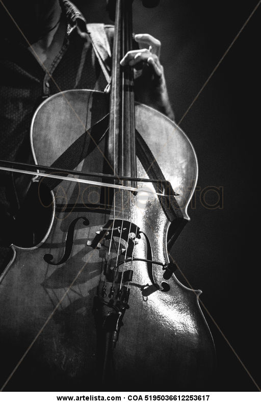 violonchelo