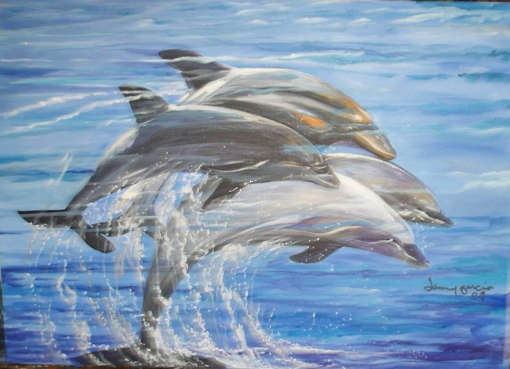Paseo De Delfines. JANNY Garcia Liranzo