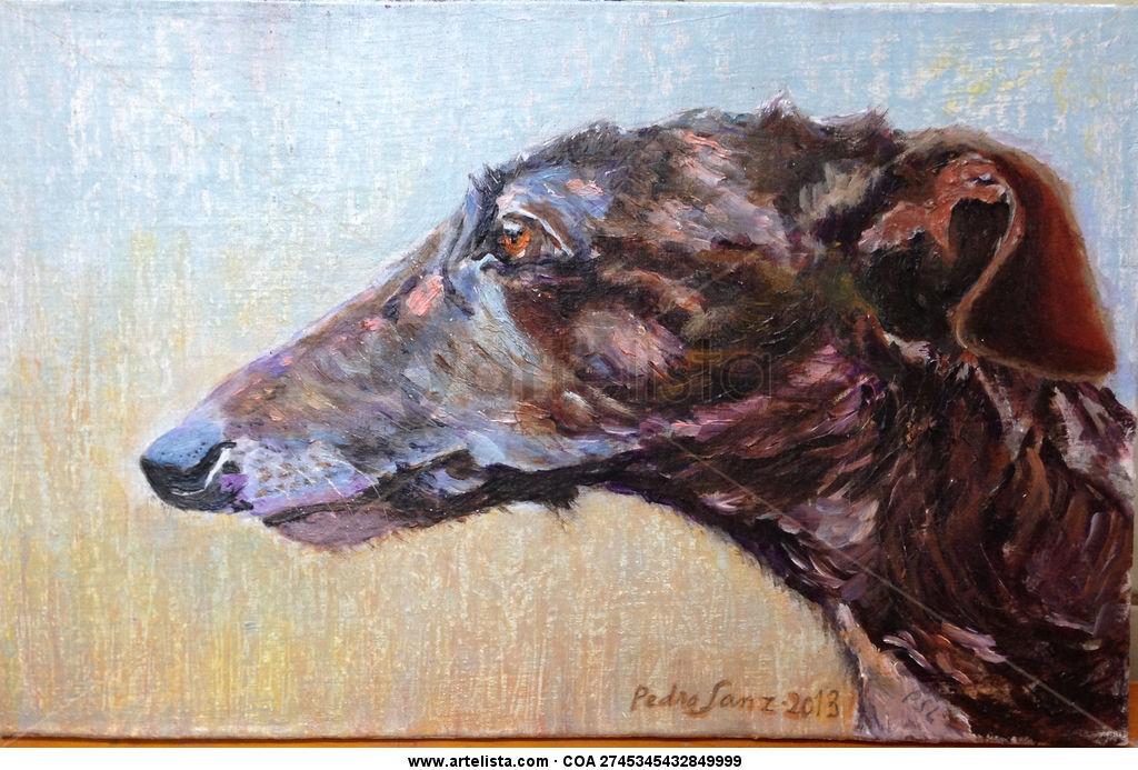 Galgo,pardo,perros,perro,mascota,mascotas,cuadros,pintura,realismo ...
