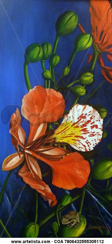 Flor De Flamboyan Carlos Melendez Surey Artelistacom