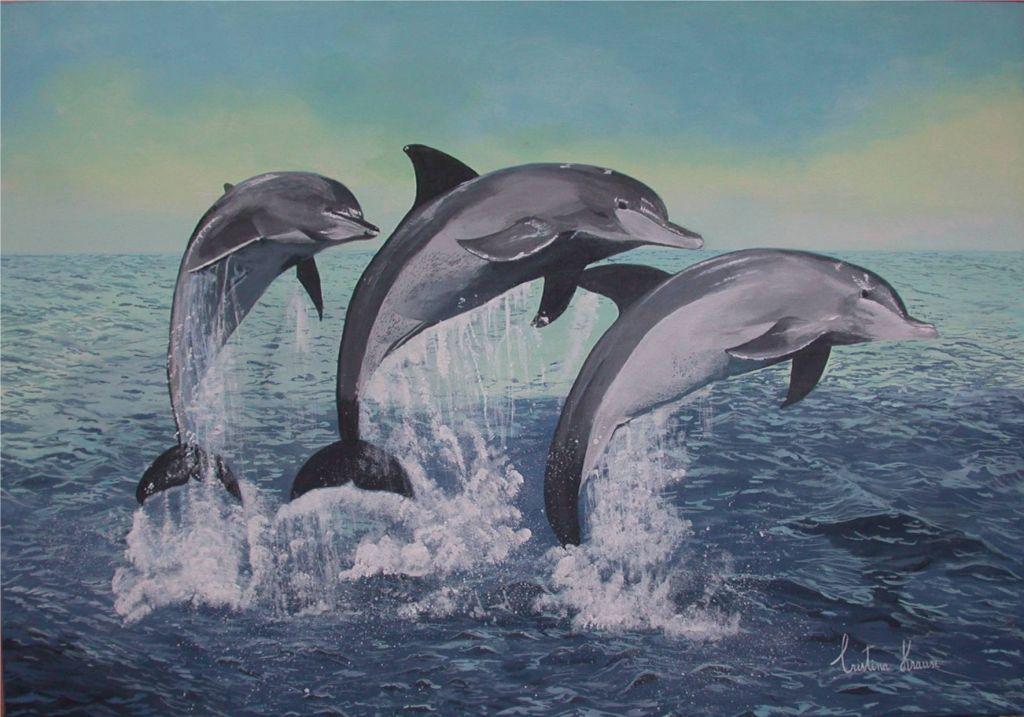 Delfines en el amanecer CRISTINA KRAUSE  Artelistacom