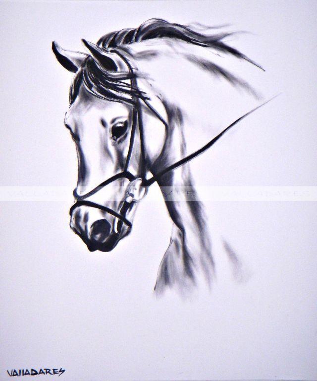 Cabeza de caballo Jorge Valladares Diguez  Artelistacom