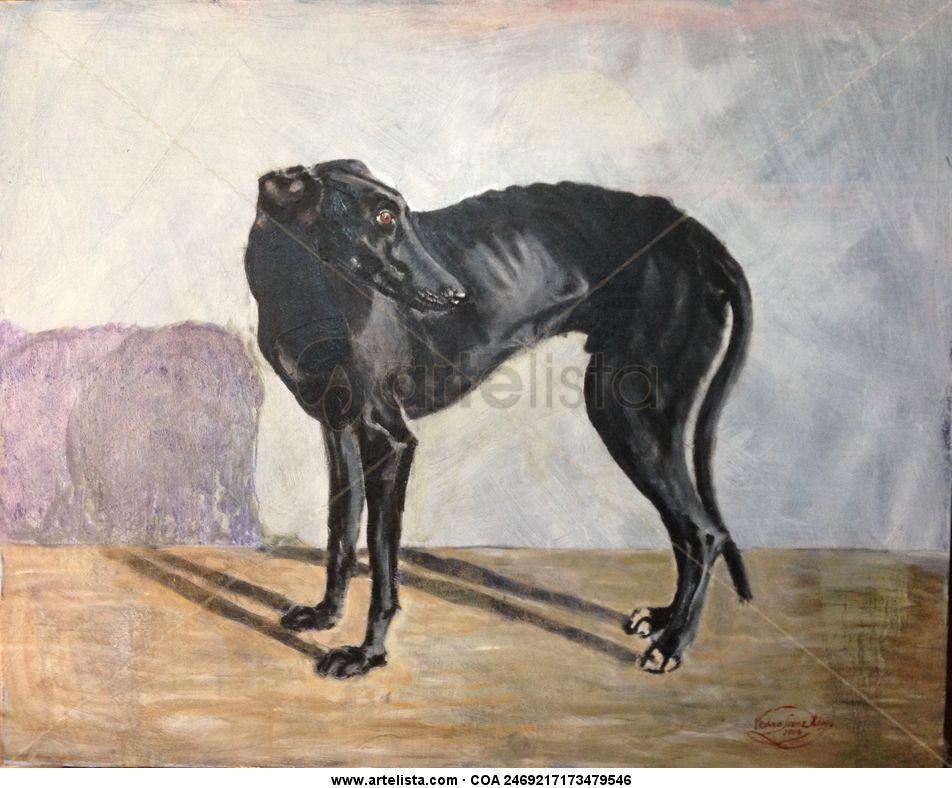 Galgo, negro temeroso,mascota,perros,pintura,cuadros,oleos Pedro ...