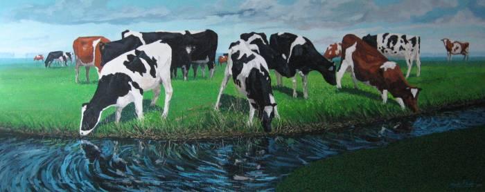 Vacas en friesland bygocha d 39 amalia - Cuadros de vacas ...