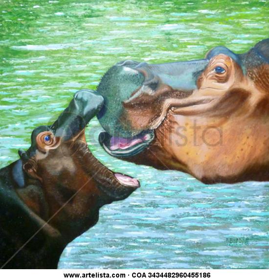 Hipopòtam i cria  Animals Canvas Oil