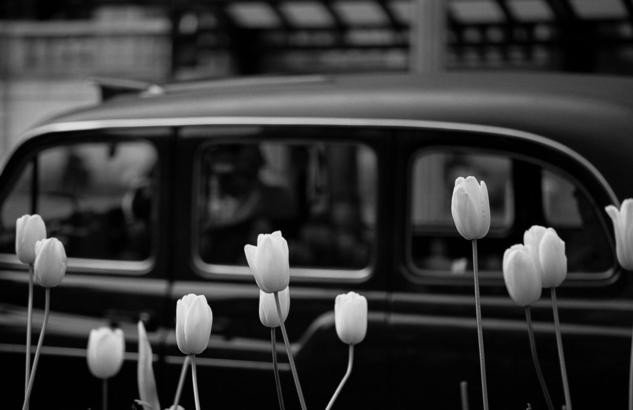 TAXI IN LONDON Black and White (Digital) Travel