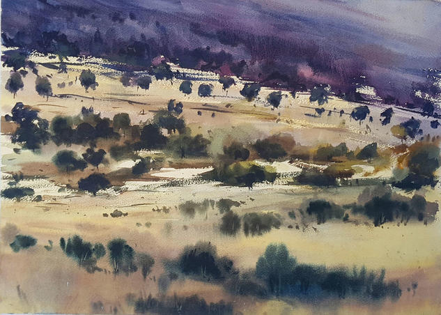 campo de olivos Landscaping Watercolour Paper