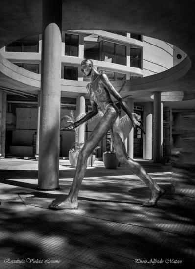 Gigante de Sonoma Otros Figurativa