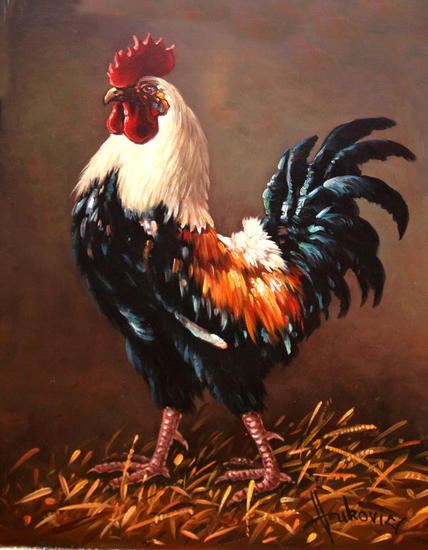 rooster - the master of the yard Lienzo Óleo Otros