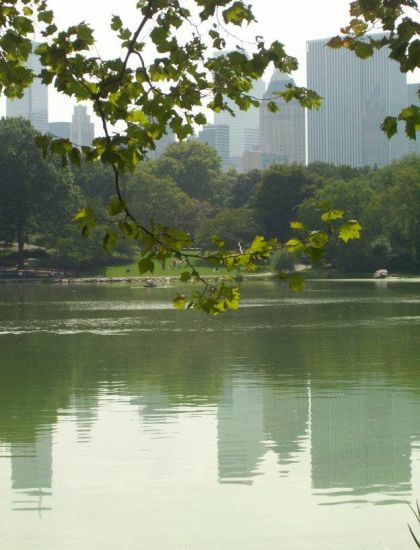Central Park Green Viajes Color (Digital)