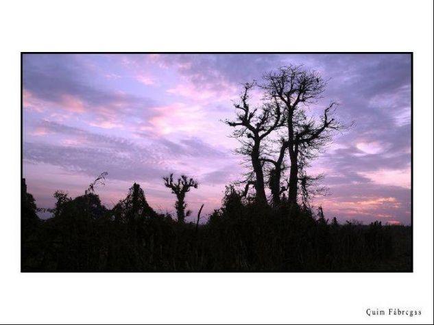 Una visión de Gambia Viajes Color (Química)