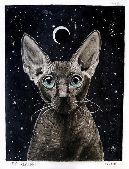 Gato Esfinge nocturno Técnica Mixta