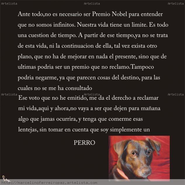 Reflexiones de Pascualito