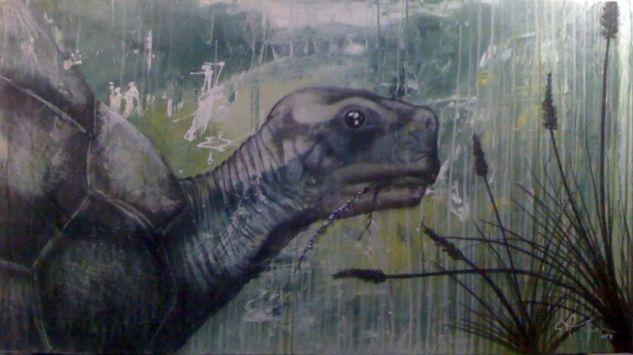 tortuga Acrílico Lienzo Animales
