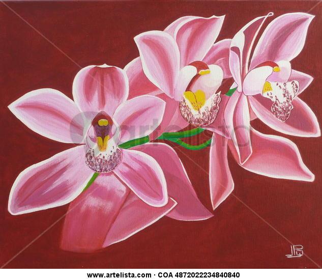 Orquidea JPGarcia