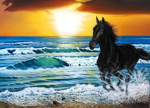 serie marinas y caballos no 4 jorge josé luis joanicot artelista com