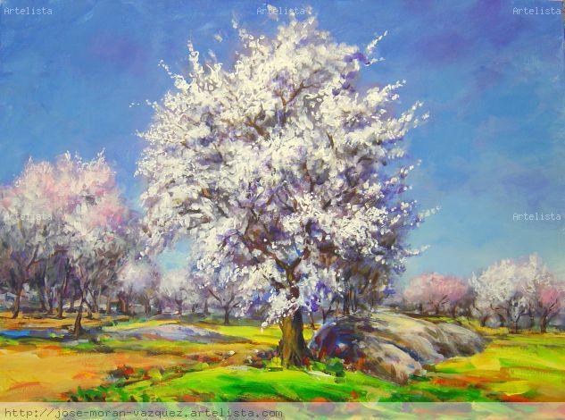 Almendros en flor Lienzo Acrílico Paisaje