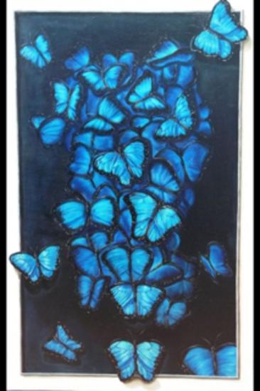 mariposas Animales Óleo Lienzo