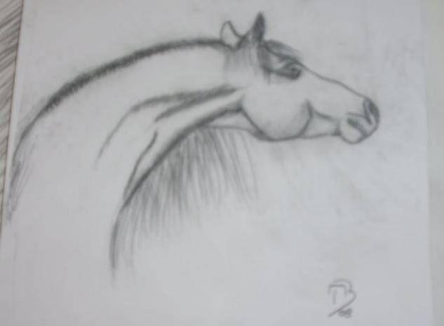 caballo Técnica Mixta