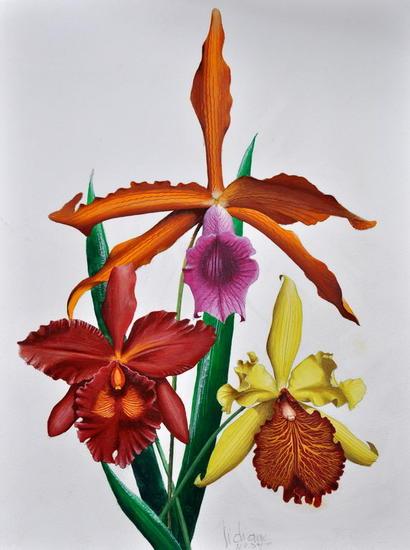 ORCHIDEES Papel Gouache Floral