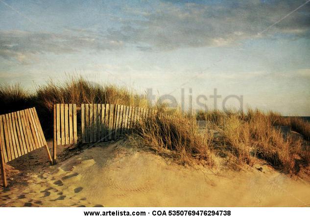 dune&fence