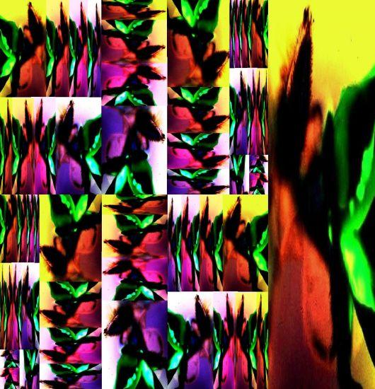 COLAGE FOTOGRÁFICO-21 Color (Química) Conceptual/Abstracto